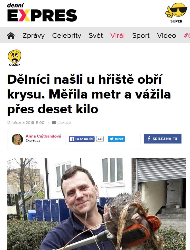 Dělníci našli u hřiště obří krysu. Měřila metr a vážila přes deset kilo Expres.cz